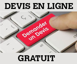 https://pro.darty.com/res9/pdf/devis_en_ligne.pdf